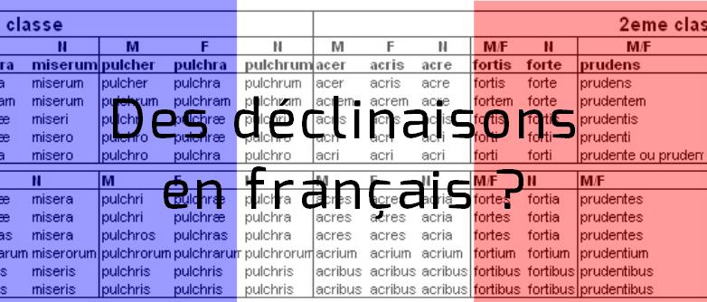Oui, le français a des déclinaisons - Quantième art